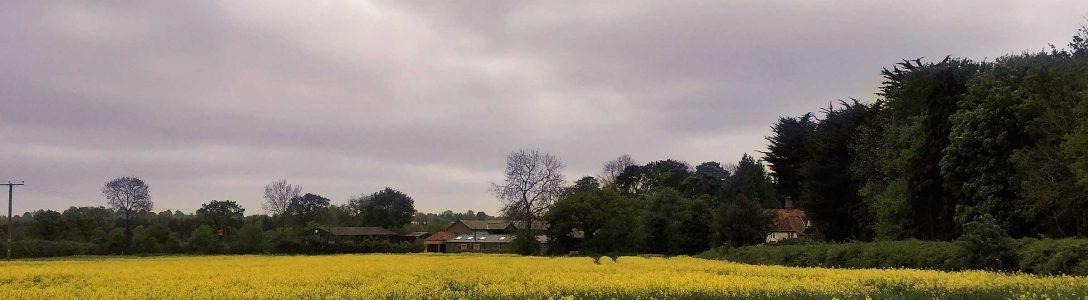 Country Estates & Farms