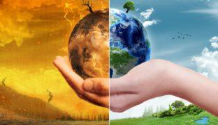 Net Zero UK Report and Climate Change Emergencies